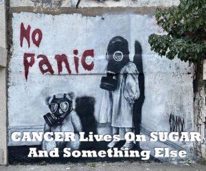 CANCER Lives On SUGAR And Something Else